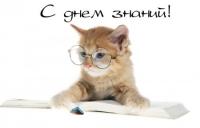 Nika_33333@mail.ru
